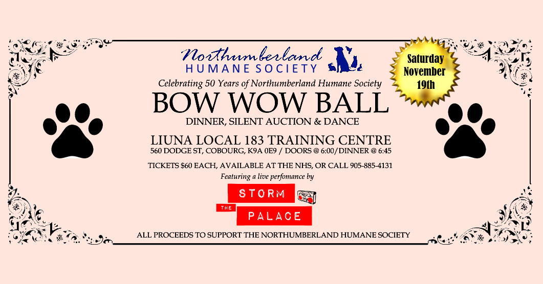 bow-wow-ball-banner-2016-v4