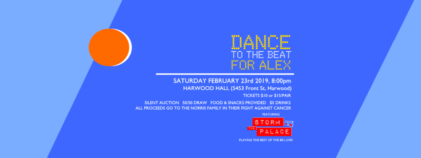 storm the palace 80s 90s retro cover band toronto party Port Hope harwood dance to the beat for alex benefit cancer