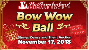 northumberland humane society storm the palace retro 80s 80's cover band toronto party wedding corporate GTA port hope cobourg 1980s 1980's music